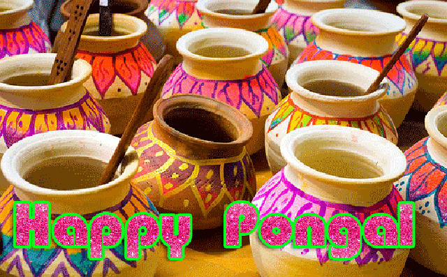 Happy-Pongal-Celebration-Wallpapers-free