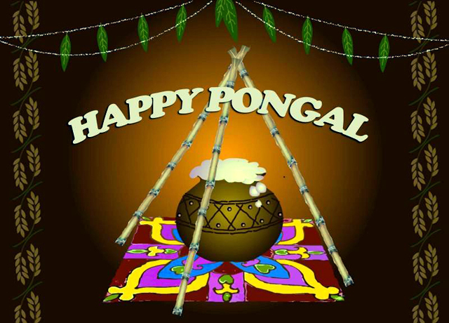 Happy-Pongal-Celebration-Wallpapers