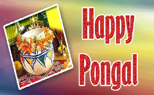 Happy-Pongal-Celebration-hd-Wallpapers