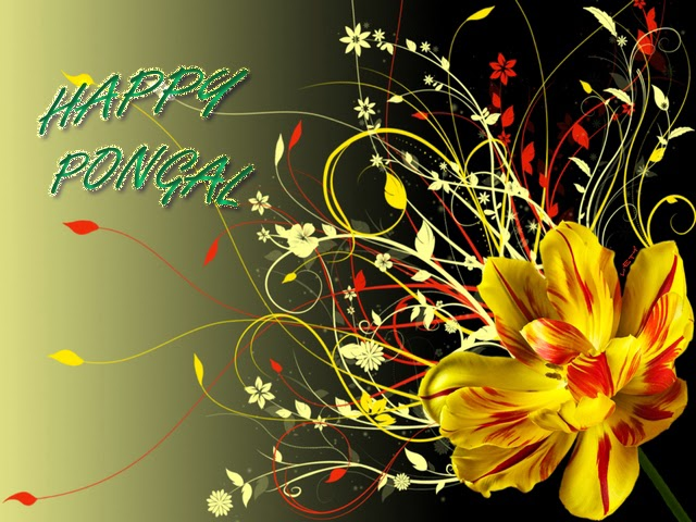 Pongal Festival wallpapers hd images download