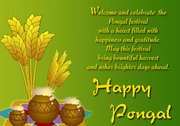 Pongal-Images-best-collection-2016