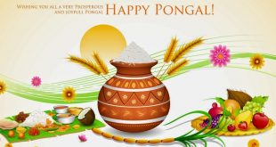 Pongal sms in tamil archives happy wala gift gift ideas hd pongal is a crop or harvest festival the tamilian consider it as thanksgiving festival in an agriculture based civilization the production of crops plays m4hsunfo