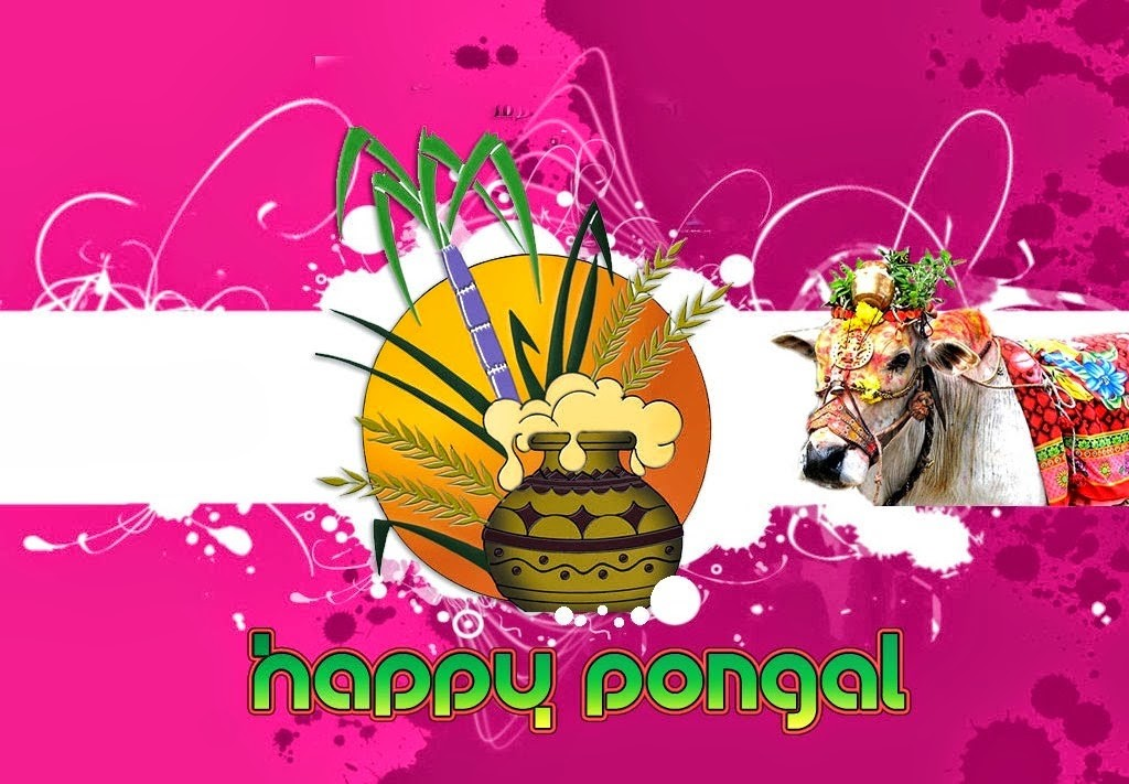 Pongal wishes in Different Languages hd wallpapers (2)