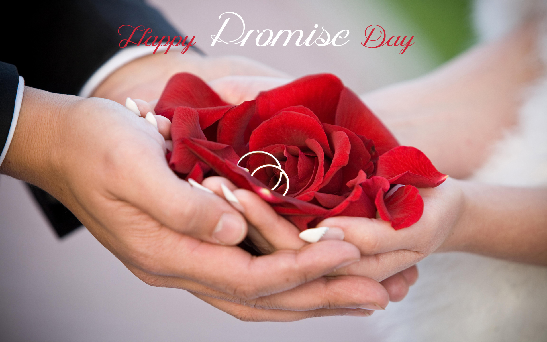 Promise day hd wallpaper