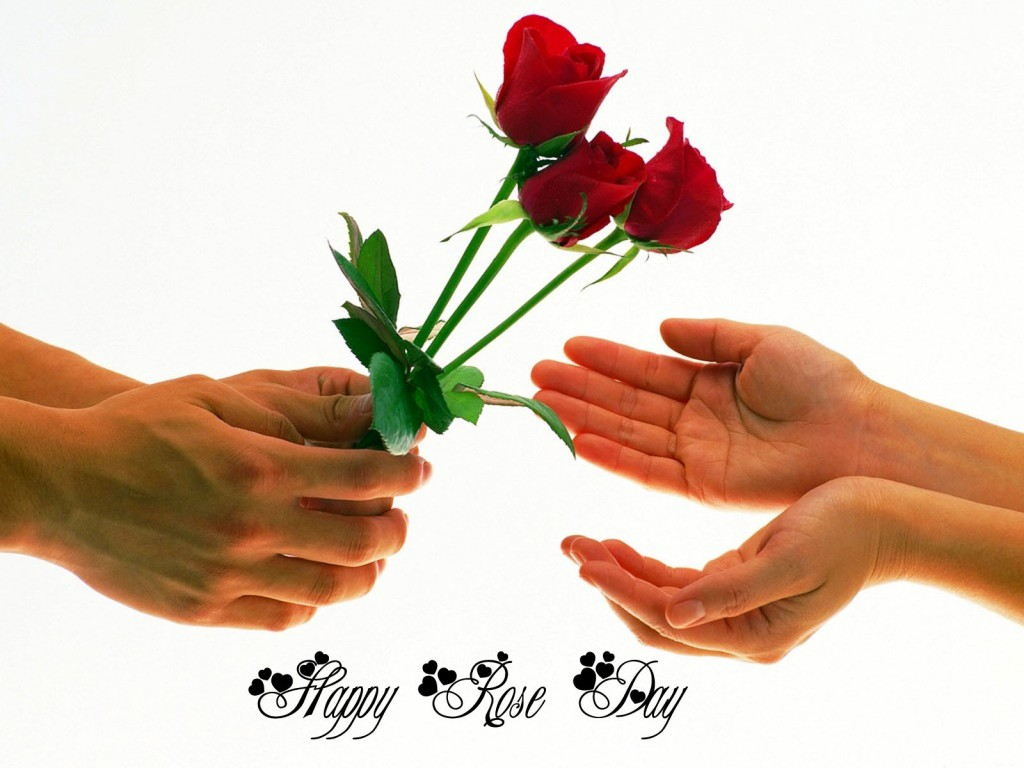 Happy-Rose-Day-Wallpapers-HD-i-love-you