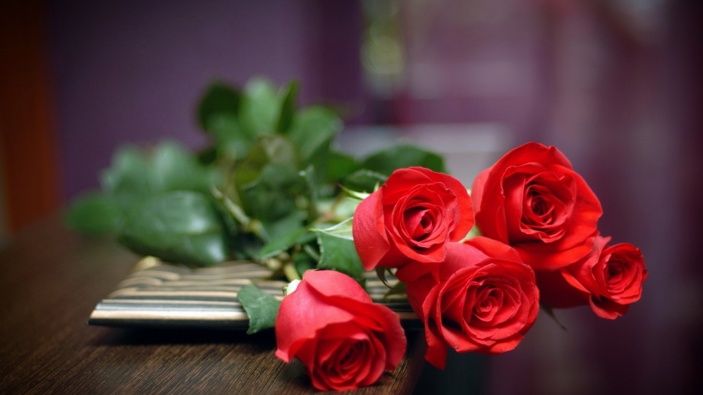 Rose Day-7th-February-2016_Wallpaper