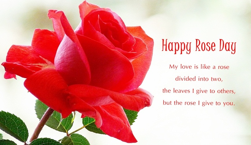 Special-Happy-Rose-Day-2016-Quotes-Wishes-Sms