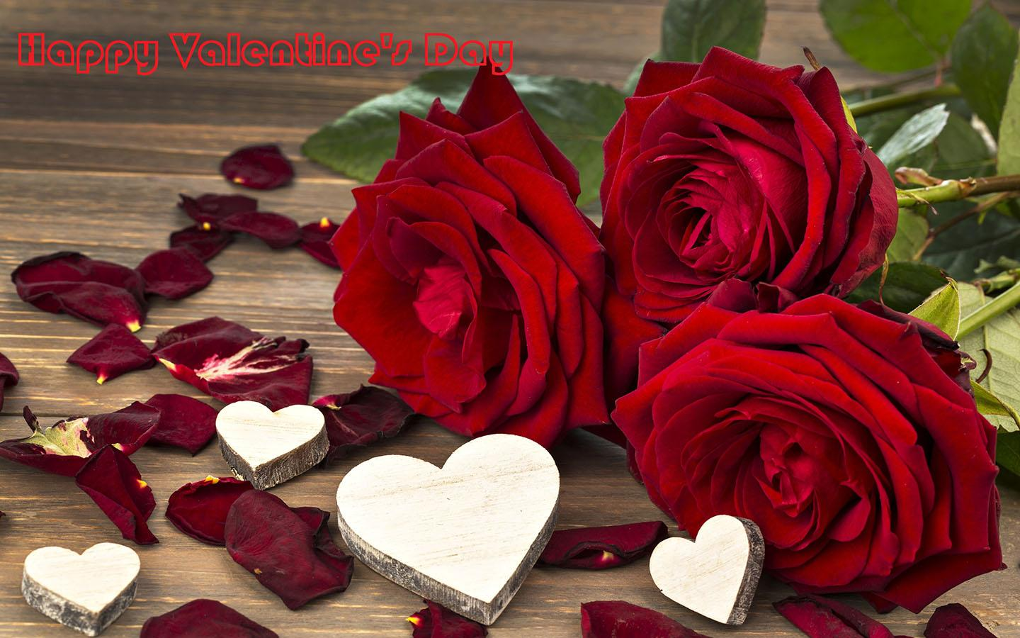 Valentine s day romantic red roses hd wallpapers free for Buying roses on valentines day