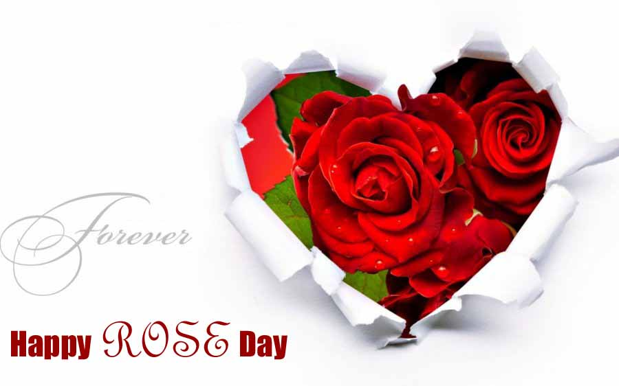 Wallpapers-Happy-Rose-Day-images