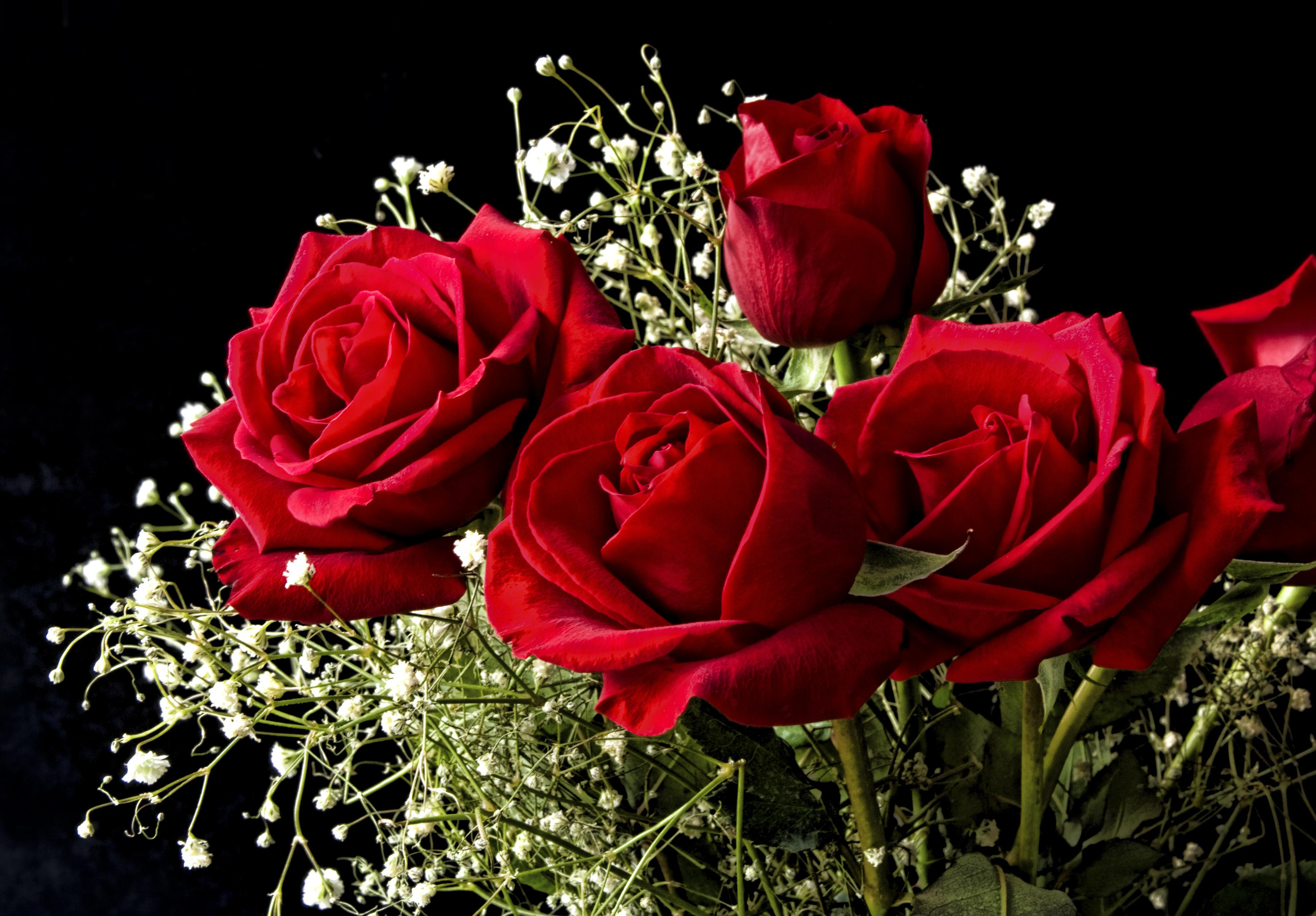 bouquet_of_roses