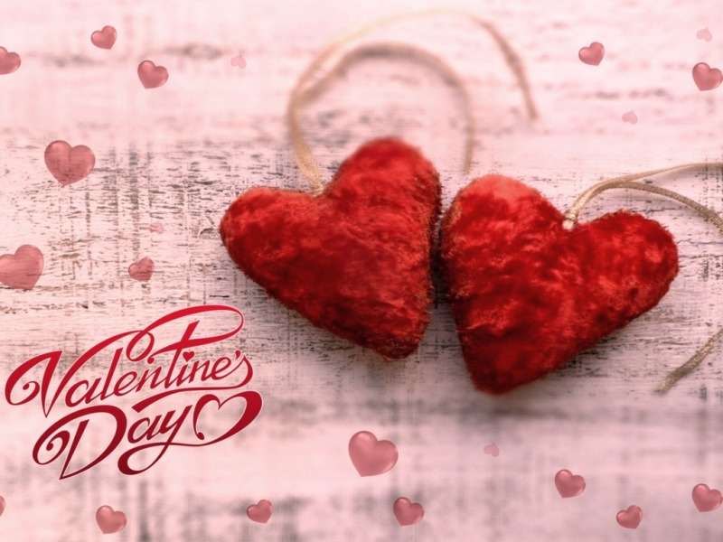 Valentine\'s Day Fresh HD Wallpapers, Images, Photo Free Download