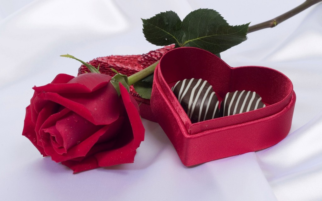 red-rose-and-chocolate-flower-flowers