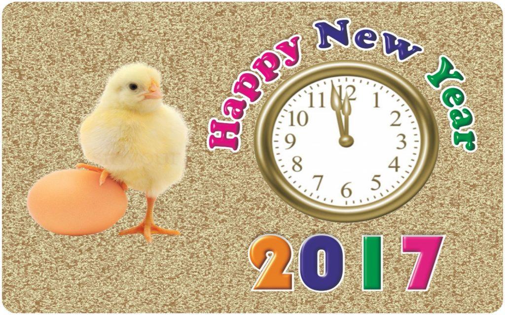 Happy-new-year 2017