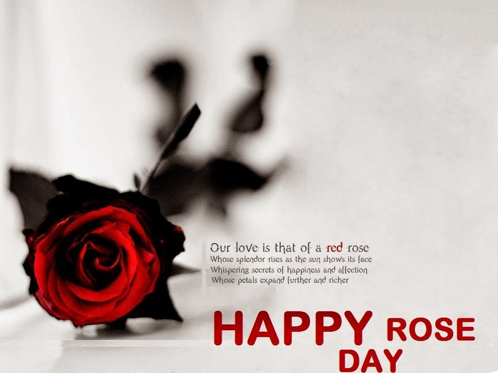 Happy-Rose-Day-Latest-HD-Pics-i-love-you