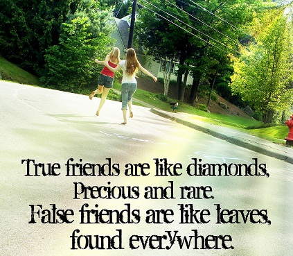 Best Famous Friendship Quotes with Images for best friends-5