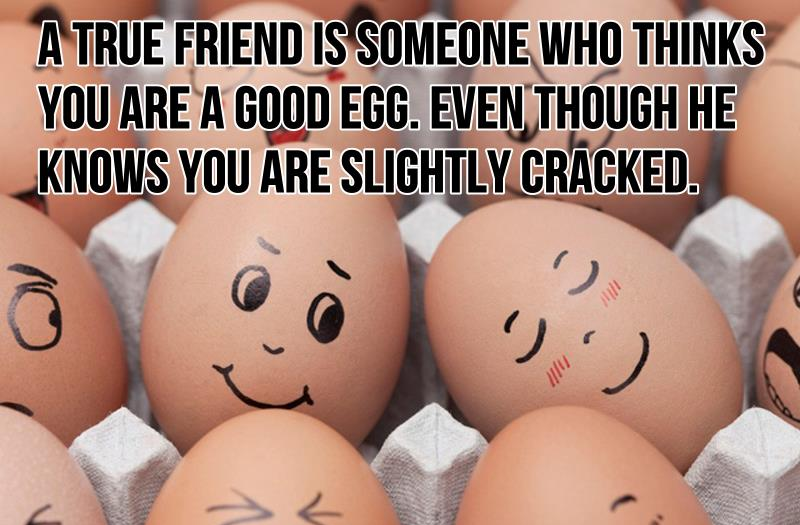 friendship-quotes-best