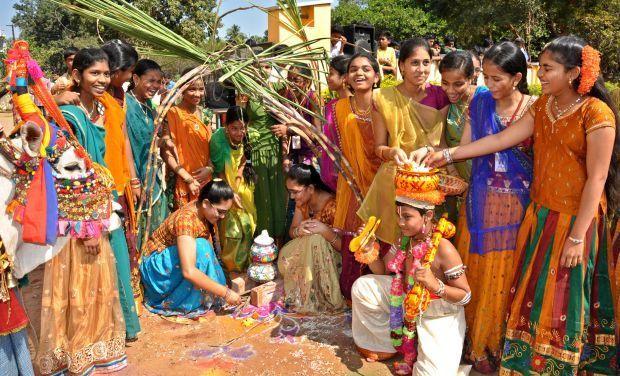 Family-Festival-Makar-Sankranti-ANDHRA PRADESH