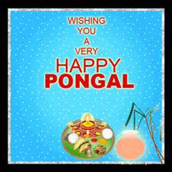 Happy-Pongal-Celebration-Wallpapers-05
