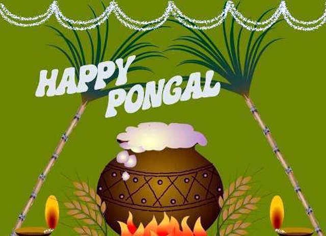 Happy-Pongal-Celebration-Wallpapers-images