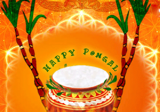 Happy-Pongal-Celebration-Wallpapers-photo