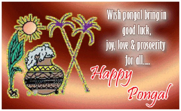 Happy Pongal Festival Greetings wallpapers (3)