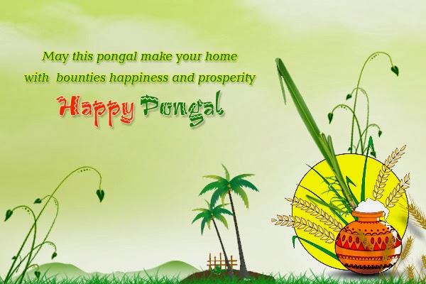 Happy Pongal Festval wishes with Quotes wallpapers