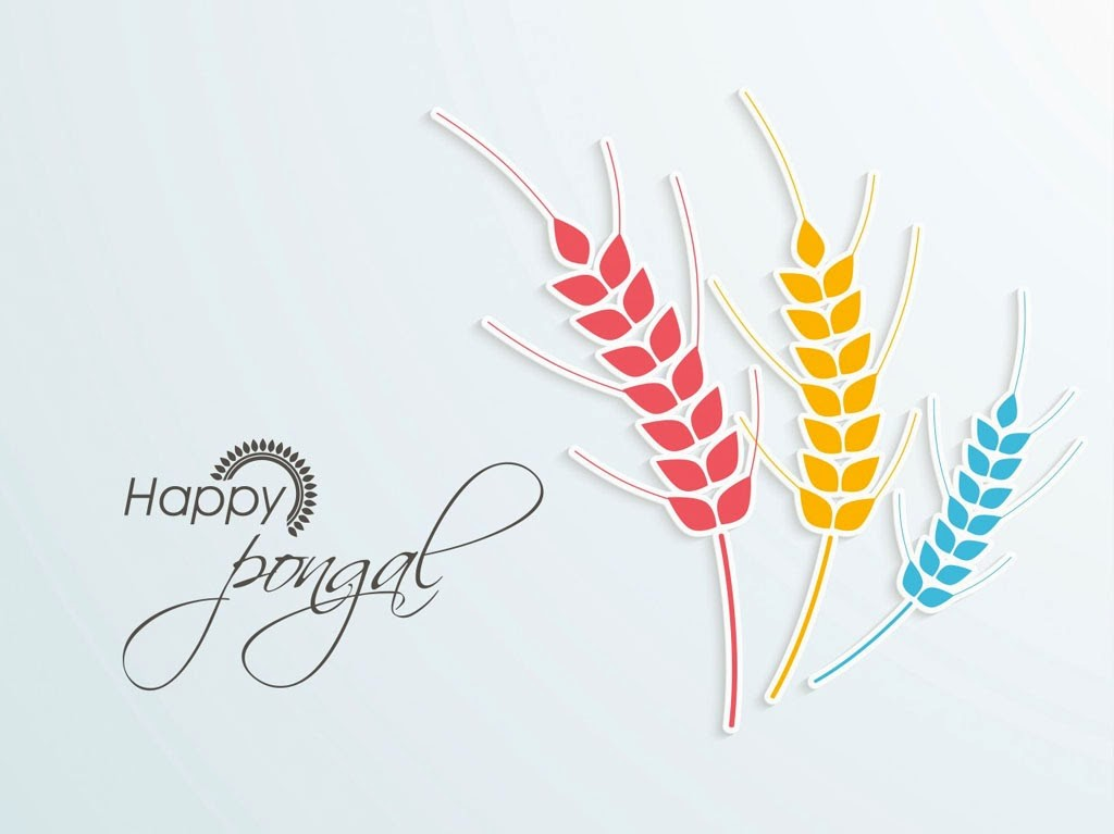 Happy Pongal Images And Wallpapers 2016