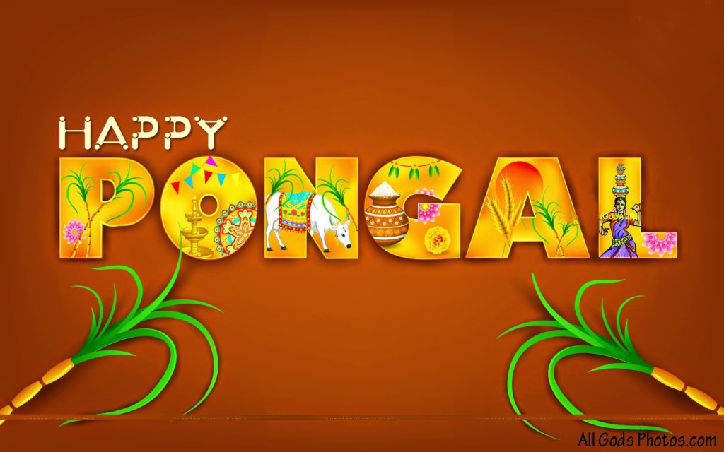 Happy Pongal Wallpaper 2016