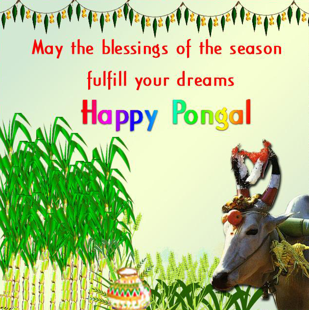 Happy Pongal wishes with quotes photos