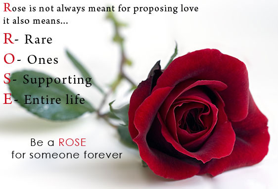 Happy-Rose-Day-Images-2016
