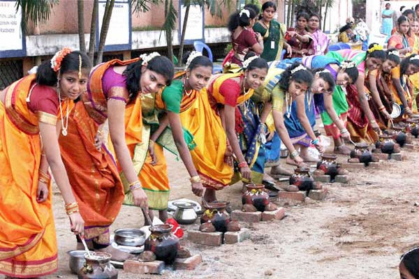 Pongal Celebrations India 2016