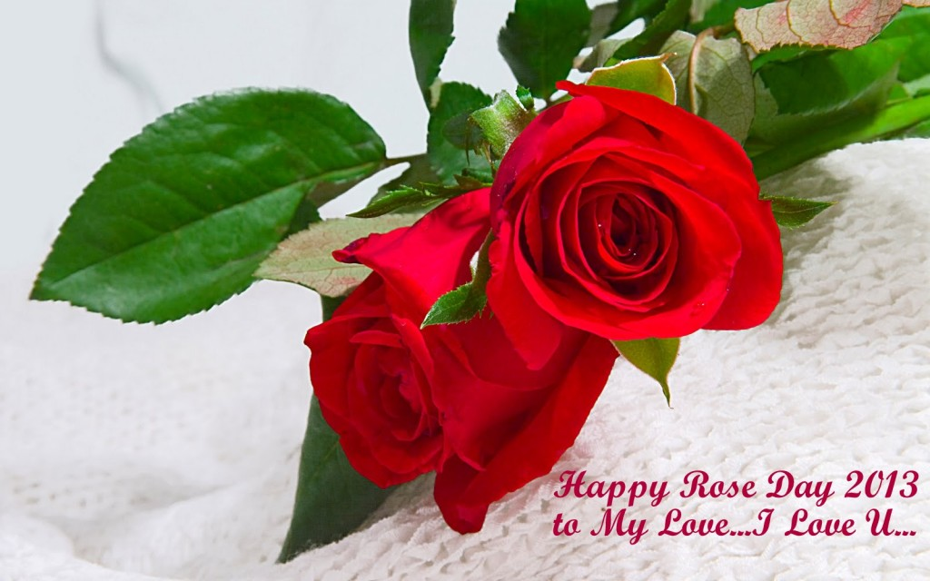 Red-rose-day-happy