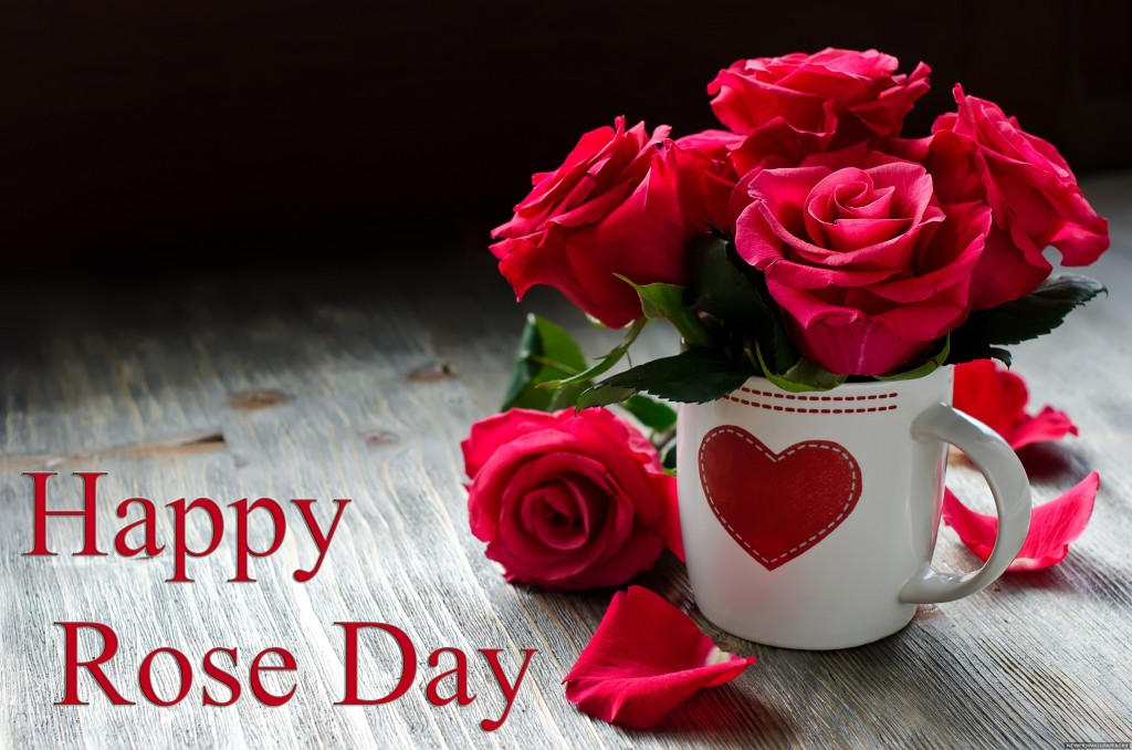 Red-rose-happy-rose-day-wallpaper-2016
