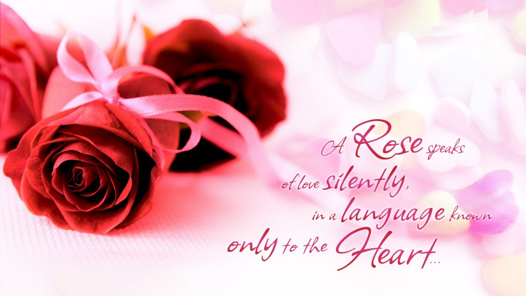 Rose-Day-Wallpaper-love-images