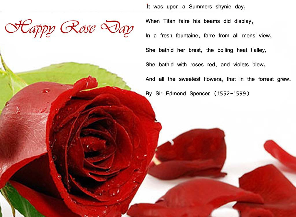 Rose-Day-Wallpaper-love-and romantic