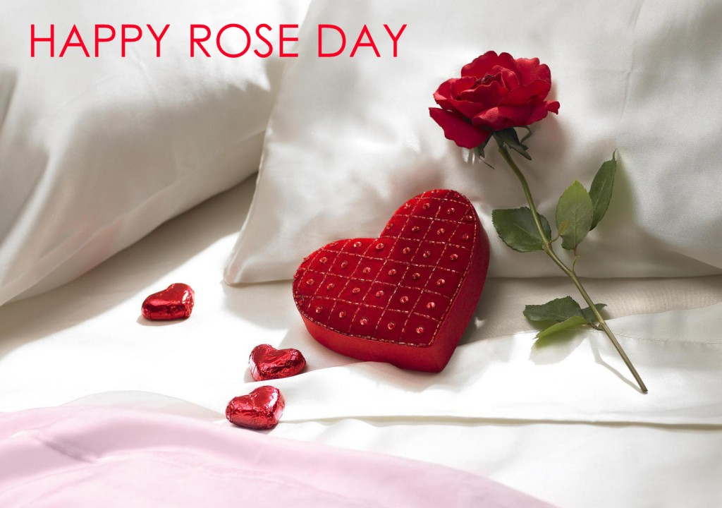 happy-rose-day-pics-hd-wallpapers-