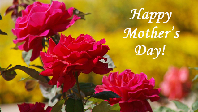Happy-Mother-Day-Rose-Flowers