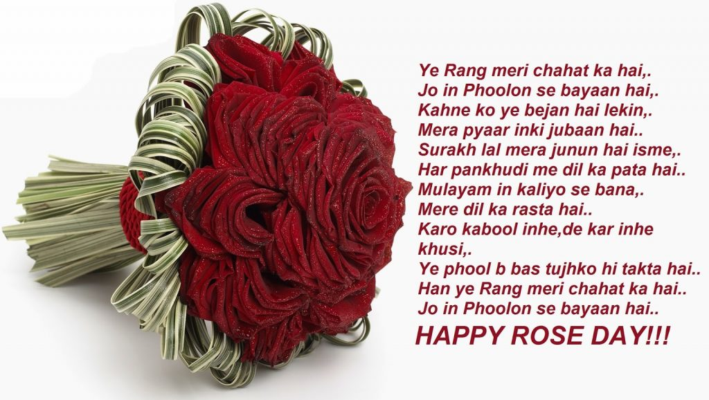 Happy Rose Day 2018 HD Wallpapers and Pics-lovely dark red roses.