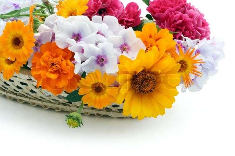 Flowers Show Love and Care