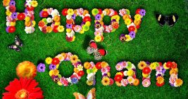 Happy Onam Images for Whatsapp DP, profile wallpapers 1
