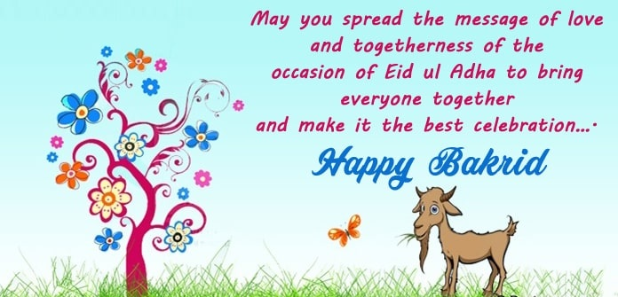 Bakra Eid Mubarak Wallpaper, HD Images, Pics, And Photos
